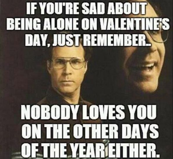 Valentine S Day Is A Low Blow To All Mankind 33 Pics Funnyfoto Funny Valentine Memes Valentines Memes Single Humor