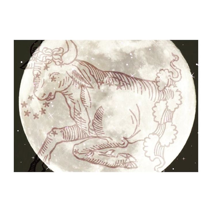Whose ready for for tonights Full Moon in Taurus?  Do you have any full moon rituals? . Great time to pull out a journal reflect Dream and make way for change... . Oh... and dont forget to put your crystals out (outside or in a window) to be charged beneath the moon tonight . . . #fullmoon #taurusfullmoon #lunarcycle #lunarlove #change #astrologyposts #lunarphase #crystalenergy #pisceslife #reikihealing #astrologypost #fullmoonritual #fullmoontonight