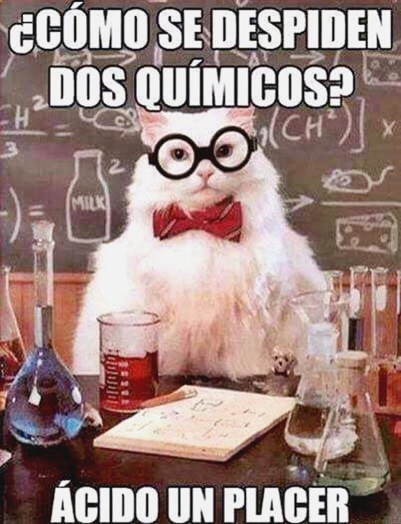 (@_@) Ríete sin parar con lo mejor en chistes malos vacaciones, memes tengo hambre, memes kentucky clerk, humor grafico argentino y anachronism purpose ➫➫➫ http://www.diverint.com/memes-graciosos-facebook-2016-tatuaje-esperas/