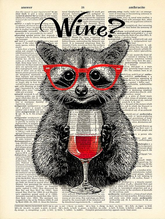 Raccoon poster wine alcohol funny poster funny drink by Natalprint