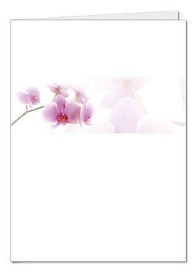 rouwkaart nova orchidee275x390.png (275×389)