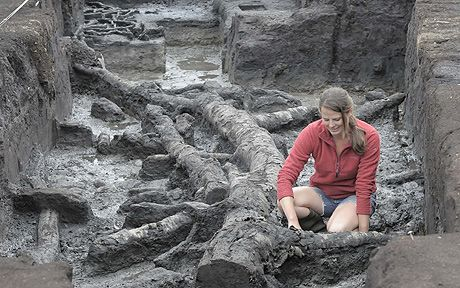 Not Bronze Age, but still cool as hell. Archaeologists have discovered Britain's earliest house dating back 11,500 years. The home is so old that when it was built Britain was still part of Continental Europe.