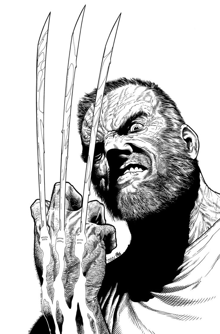 Wolverine by Steve McNiven