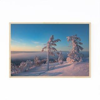 Noir Gallery Lapland Finland Snowy Trees Framed Art Print (White – 16 x 20)