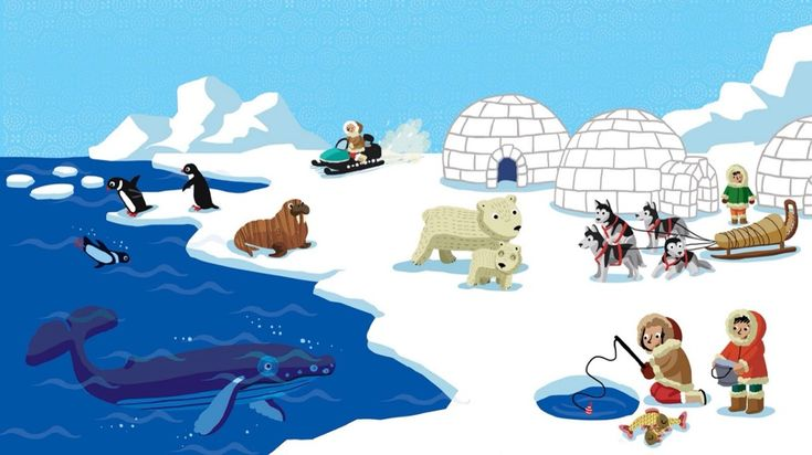 TOUCH this image: Leven op de Noordpool by ingrid