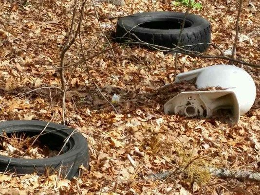 It's spelled out in large black letters: NO DUMPING. It threatens a fine and time in jail. It sits in the middle of 300 discard tires and an old toilet.