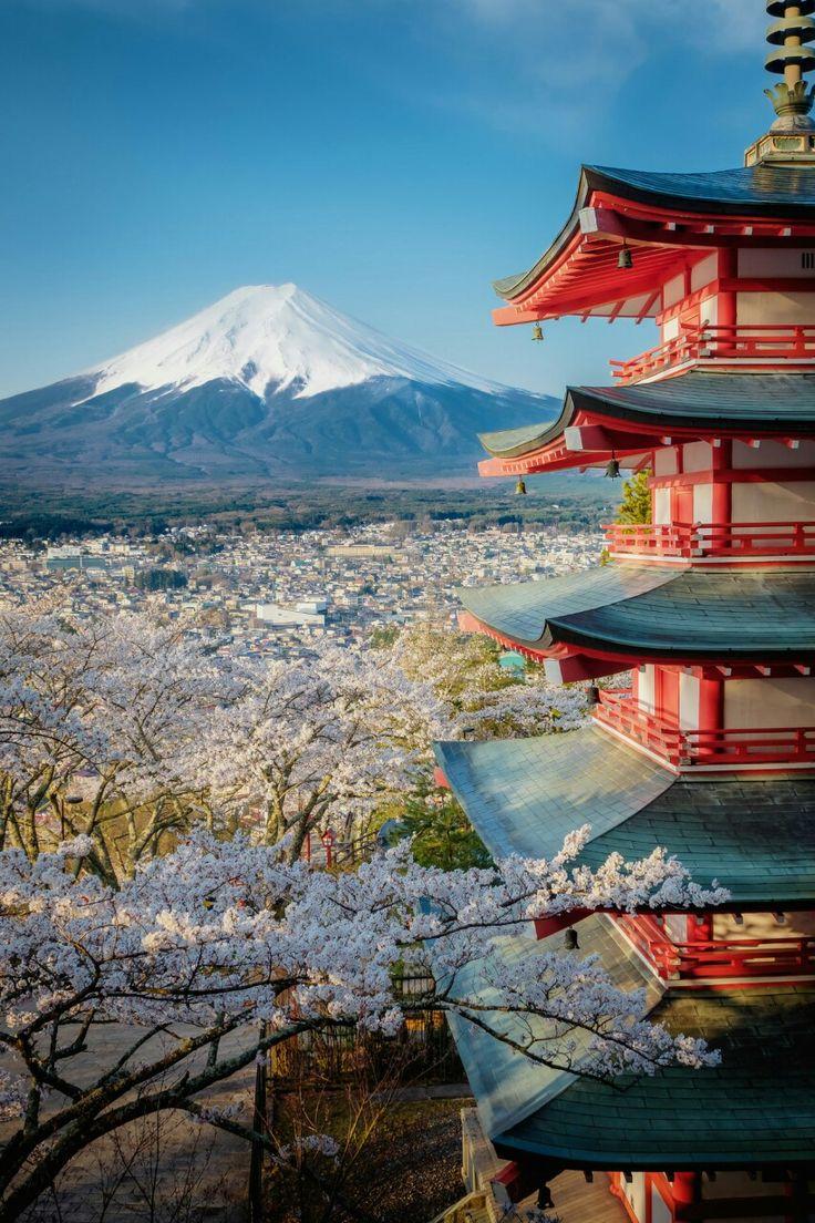 Spring in Japan via Tumblr, jiji~punch: korbindallaz