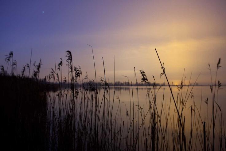 Het nachtlicht van Almere in gevecht met de opkomende zon over de Oostvaardersplassen