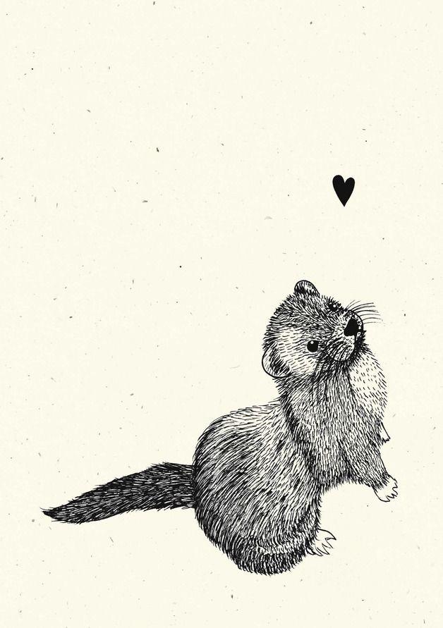 Illustrationen - Poster – »Frettchen« - ein Designerstück von feder-lein bei DaWanda