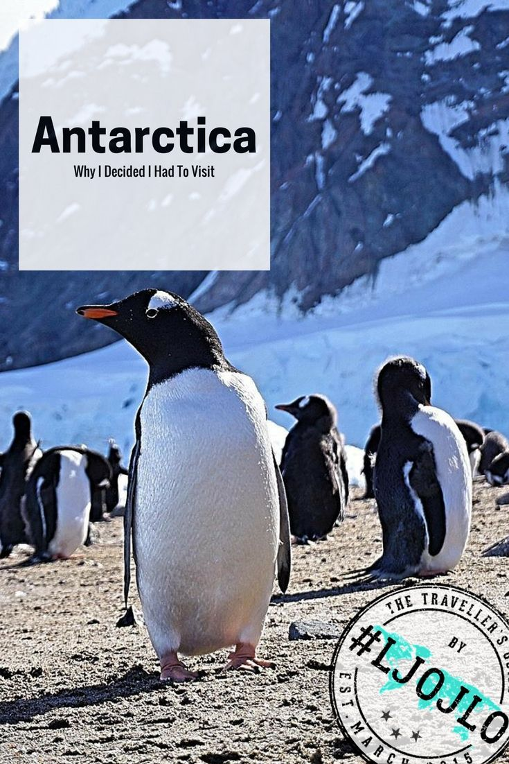 'Why the hell would you want to go there?' Is a question I heard over and over when I mentioned I was planning to visit Antarctica!