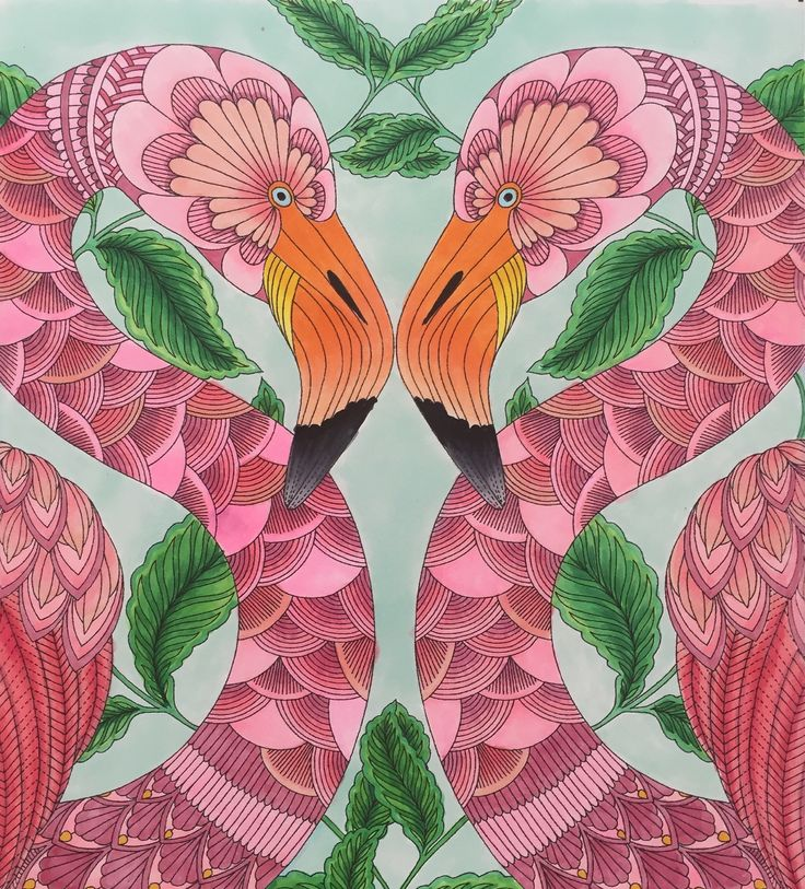 Millie Marotta Tropical Wonderland Flamingos Learning To Use Copic Markers Colouring TechniquesAdult ColoringColoring BooksColoring