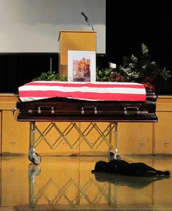 loyalty.: Labrador Retriever, Dogs, Best Friends, Jon Tumilson, Bestfriends, Navy Seals, Seals Jon, The Navy, Animal