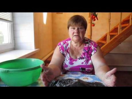 (437) Укоренение розы из букета. Проверено-работает! - YouTube