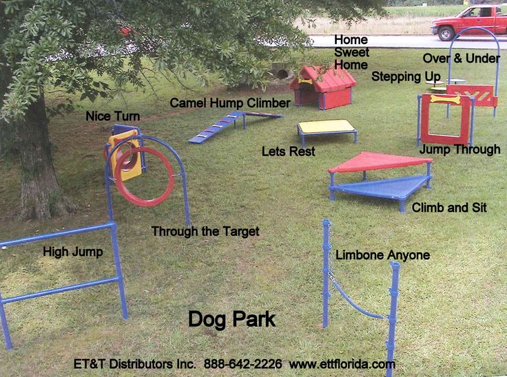 The Dog Park Activity stations offers great training and interaction with other dogs