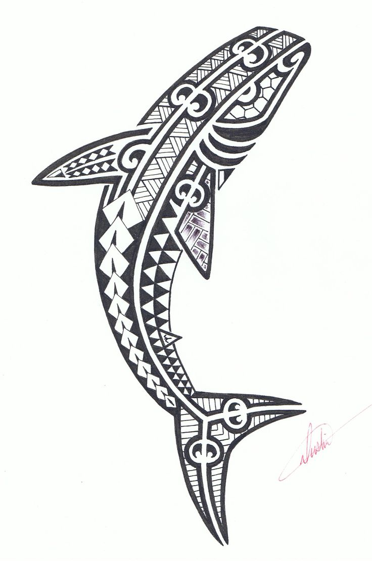 Tribal shark tattoo design