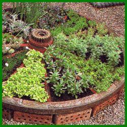 Ein in Kleinbereiche unterteilter Kräutergarten ist pflegeleichter und leichter abzuernten, eine größere Kräuterfläche wirkt bald ungepflegt