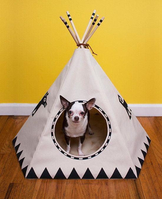 25 best winter dog house ideas on pinterest for Best dog door for winter