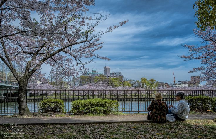 https://flic.kr/p/GewP9G | Japon 2016 | Viaje a Japon 2016 Shashin vision - 写真 © Felipe Mancilla Reyes www.flickr.com/felipemancilla