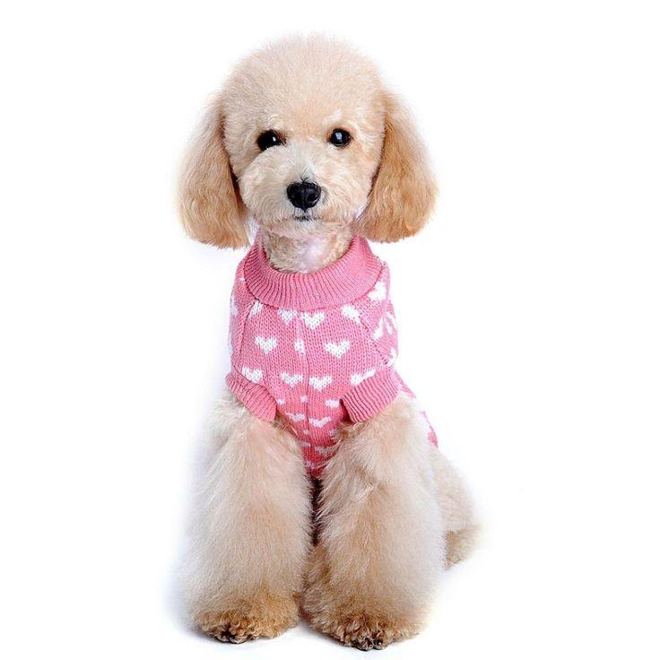 Mejores 17 imágenes de Ropa para Bull dog Francés en Pinterest ...