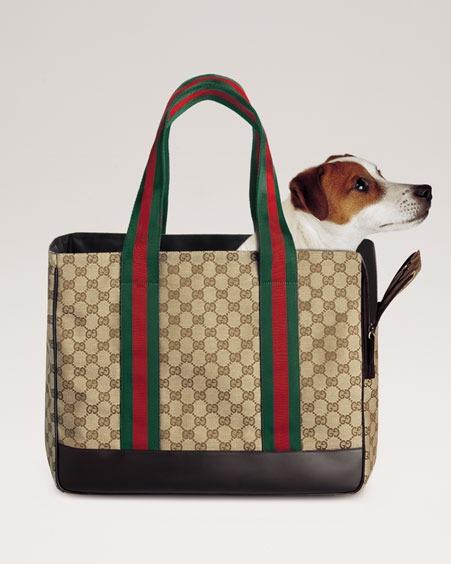 2575d63a1e4 Gucci Dog Carrier.