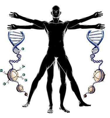 Эпигенетика: невидимый командир генома.