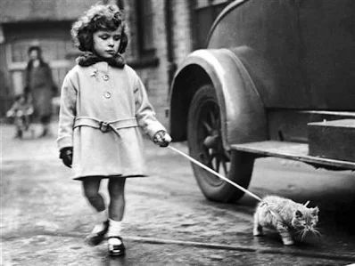 Children and their pets (10)