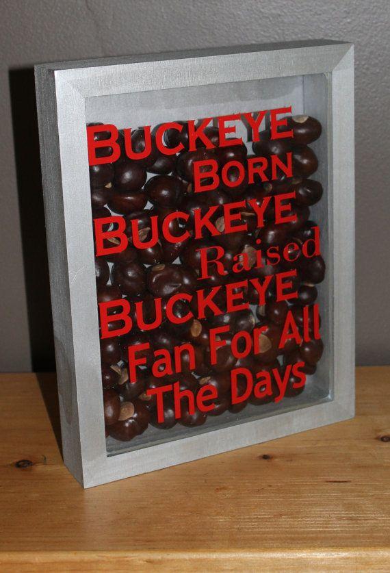 Ohio State Decor Buckeye Born Shadow Box by thebuckeyelady on Etsy