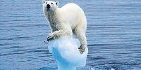 La petición más grande de la #Historia por un #Planeta que se mueva con #Energías 100% limpias.  Siento hablar así, pero un científico de gran renombre ha advertido que nos iremos al carajo a causa del calentamiento global si se liberan las toneladas de gas metano acumuladas en la tundra antártica. La ONU sabe que esta es una de las tremendas amenazas climáticas que nos acechan, ...  Leer completo…