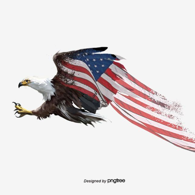 Flying White Headed Sea Eagle Gradual Hand Painted Elements Of American Flag National Flag National Bird Hand Painted Png Transparent Clipart Image And Psd F Bandera De Estados Unidos Aguila Png