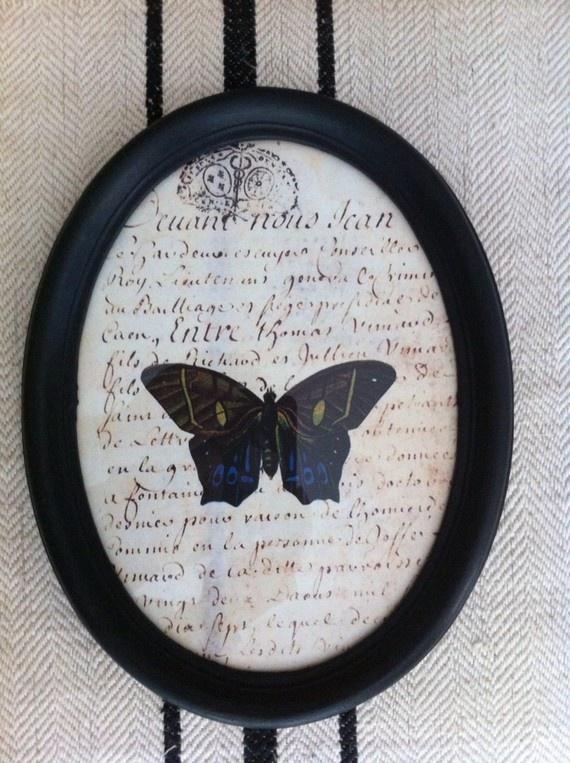 Cadre ovale patiné noir - butterfly old letter