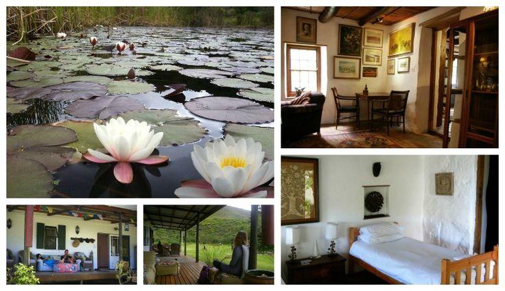 Bodhi Kaya Farm and Retreat Address: Grootbos Road, Stanford Tel: 028 - 388 0156 Email: info@bkr.co.za