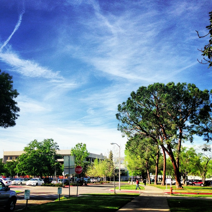 Apartment Store State College: 72 Best Images About Fresno State Campus On Pinterest