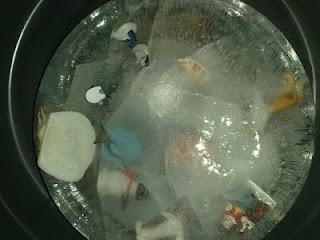 Frozen Sensory Tub