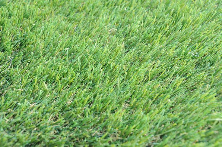 Termiturf Smarter Looking Lawn