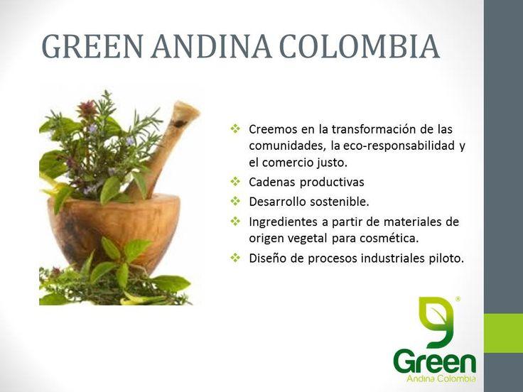 En que creemos como Green Andina Colombia y las comunidades