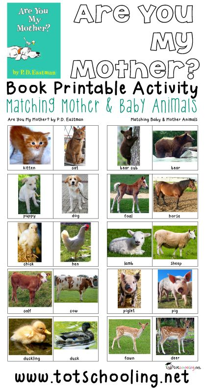 Free Matching Mother and Baby Animals Printable from Totschooling