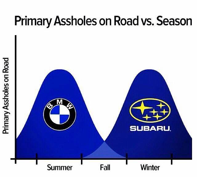 Primary assholes on road vs season BMW and Subaru drivers rule