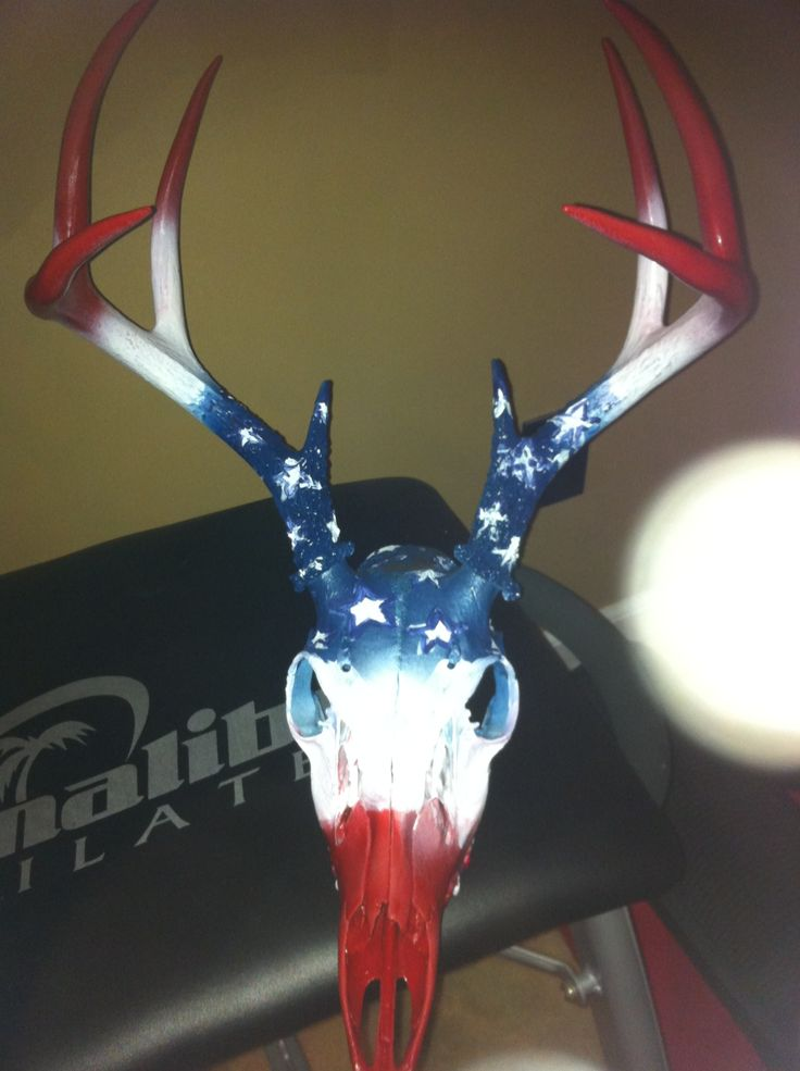 Nice patriotic hand painted deer skull - perfect for over the shed or barn door.