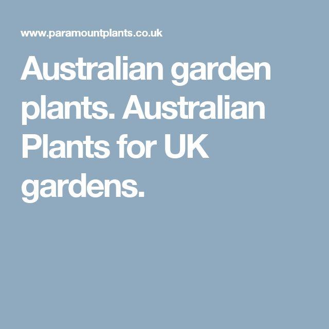 Australian garden plants. Australian Plants for UK gardens.