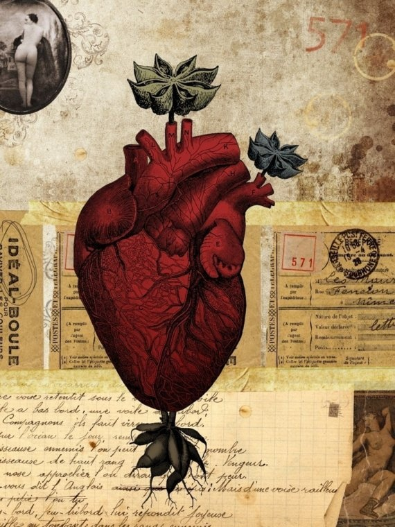 Anatomical Heart - Page 571 Altered Heart, limited edition print by Alicia Caudle on Etsy