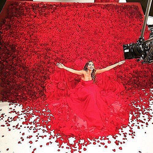 ❤️❤️❤️❤️❤️❤️❤️❤️❤️❤️❤️❤️❤️❤️❤️❤️❤️❤️❤️❤️❤️❤️❤️❤️❤️❤️❤️❤️❤️❤️❤️❤️#reddress#haute #couture #fashion #fashionista #fashionlover #dress #gown  #stunning #shoestagram #bridal #sparkle #cute#red#picoftheday #photooftheday #stylish#photoshoot #diamonds #weddingphotography #selebration #jewellery #hautecouture #wedding #weddings#weddinginspiration #weddinggowns #happybaby #happy