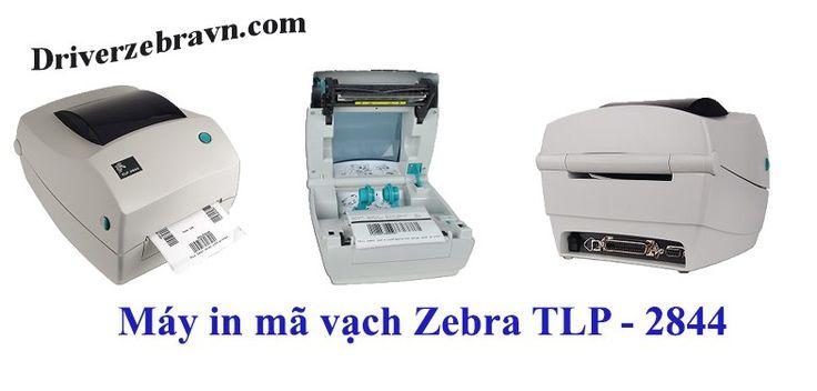 máy in mã vạch zebra TLP 2844