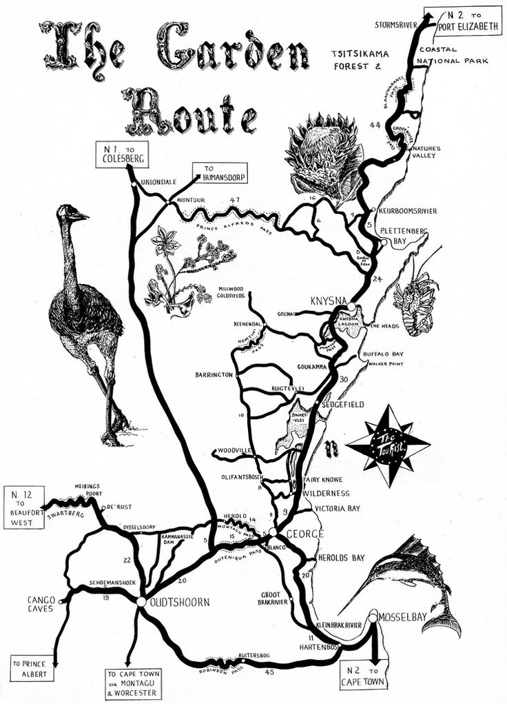 The Garden Route Map. Loved this tour  with  http://www.34southtours.com/garden-route-tour-listings.php