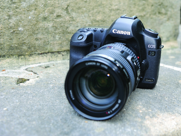 Does a bigger sensor inside a full frame DSLR like the Canon EOS 5D Mark II or Nikon D800 give you better photos? Here are the pros and cons.