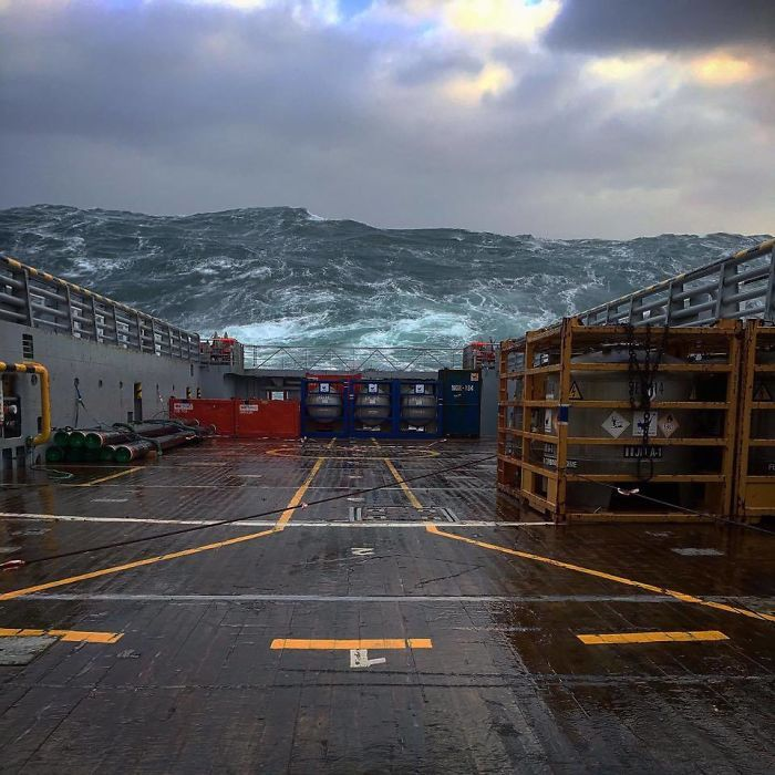 Extreme Waves In The North Sea