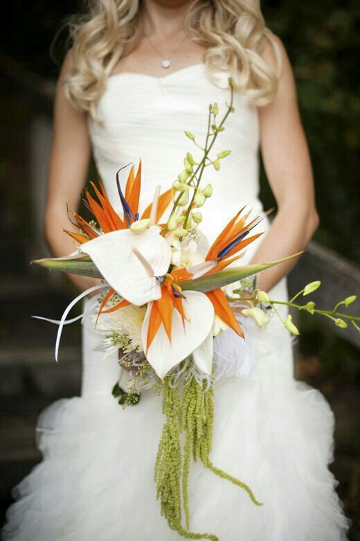 A Stunning Bridal Bouquet Arranged With: White Spider Mums, White Orchids & Buds, White Anthurium, Blue/Orange Birds Of Paradise, Green Amaranthus>>>>