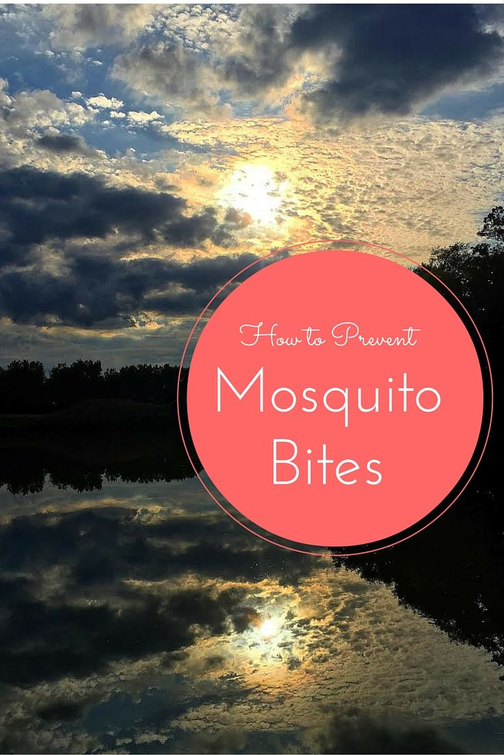 Four tested ways to prevent mosquito bites.