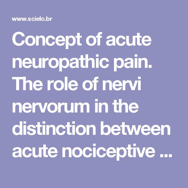 Concept of acute neuropathic pain. The role of  nervi nervorum in the distinction between acute nociceptive and neuropathic pain