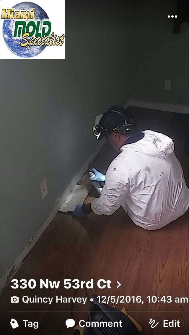 If you aren't sure that you have mold, our experts can assess your site using special equipment that can detect the hidden moisture and measure humidity levels in the building materials of your property.