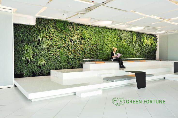 Green Fortune plantwall / vertical garden in office entrance / reception area. | Grüne Wand | Groene wand